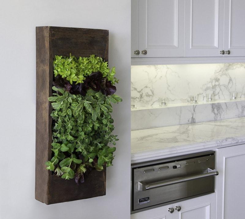 Вертикальное озеленение - идеи декорирования.
